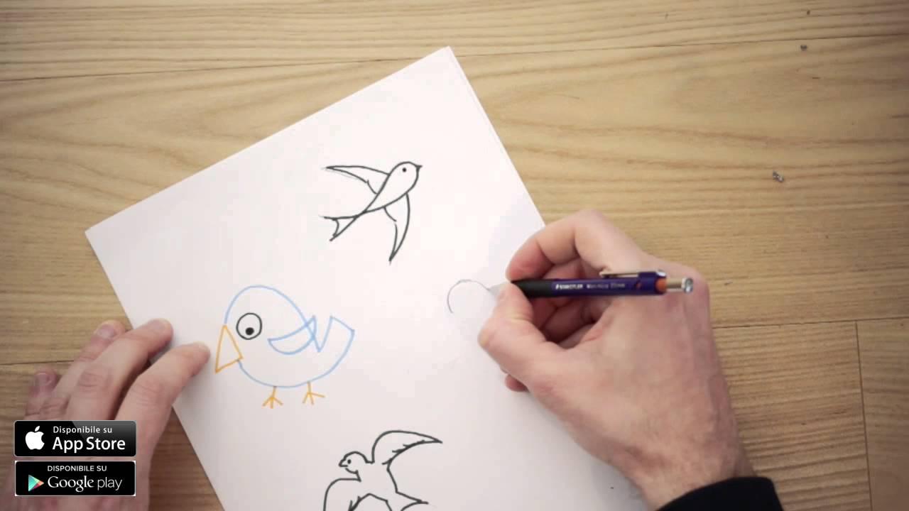 Disegni di uccelli da colorare per bambini come disegnare for Disegno pagliaccio da colorare