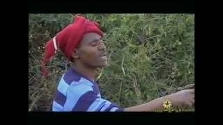 Aschalew Ayele - Wejet ወጀት (Amharic)