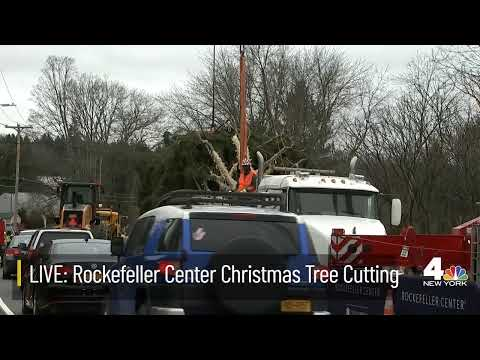 LIVE: Rockefeller Center Christmas Tree Cutting