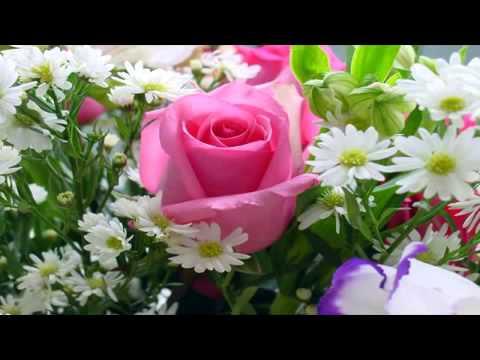 Romantic Love Songs   Instrumental Hits