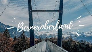 This is why I LOVE the BERNEROBERLAND!!!