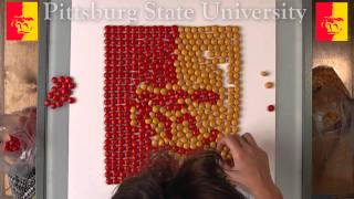 'Pitt State Logo numy nums!?!