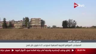وزير التموين: ضوابط استلام القمح راعت توصيات لجنة تقصى الحقائق ...