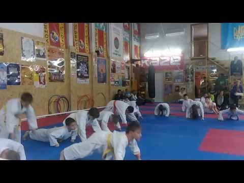 Аттестационный экзамен 29.05.2016 г. по каратэ в клубе Тигренок ч 8