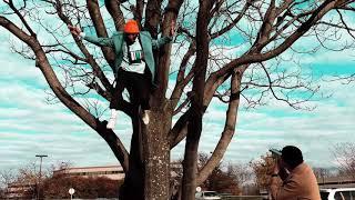 Tyler, The Creator: PUPPET (Instrumental)