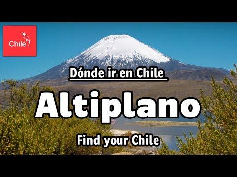 Parque Nacional Lauca y altiplano chileno