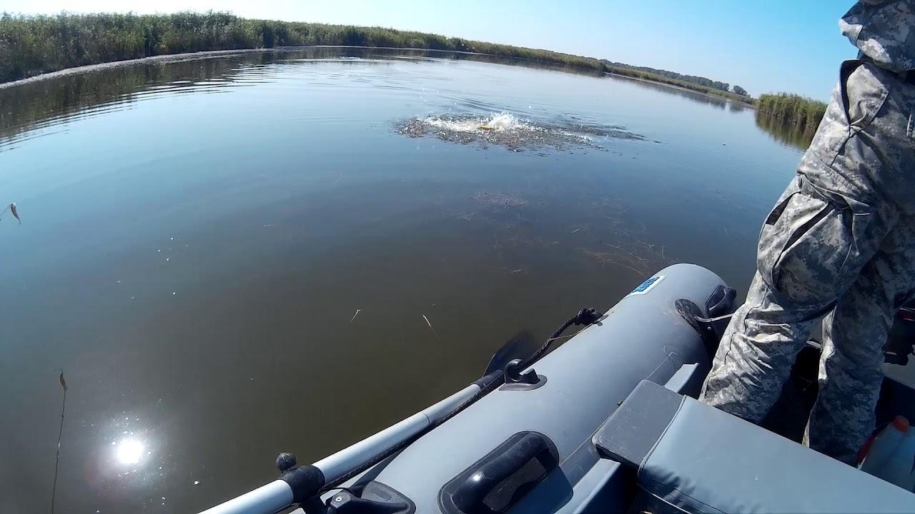 Рыбалка в брюховецкого района краснодарского края