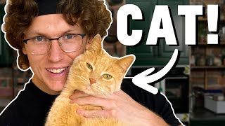 Josh Cooks For His Cat (Featuring Pippin The Cat)