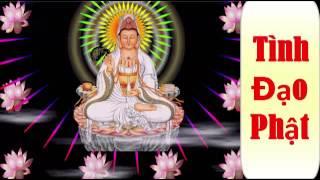 Tình Đạo Phật - Thầy Thích Huệ Duyên Tụng