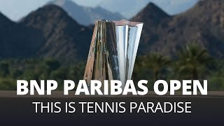This Is Tennis Paradise
