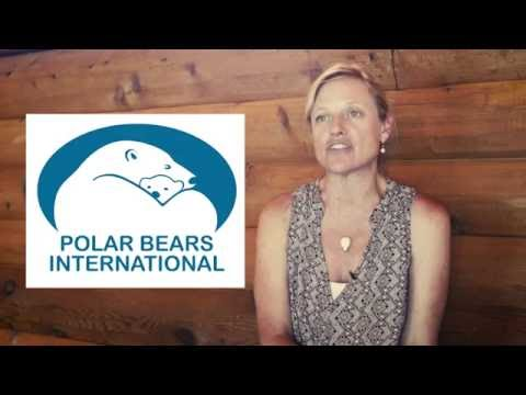 Kansas City Zoo and Polar Bears International