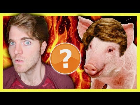 SHANE DAWSON IS A PIG? - CONSPIRACY THEORY