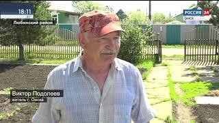 В Омск пришла аномальная жара