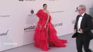 Dua Lipa at the amfAR Cannes Gala 2019! (23.05.19)