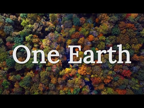 One Earth - Environmental Short Film