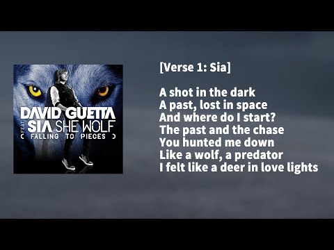 Baixar David Guetta ft. Sia - She Wolf KARAOKE