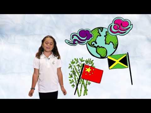 Girl Scouts Dakota Horizons - PSA 3