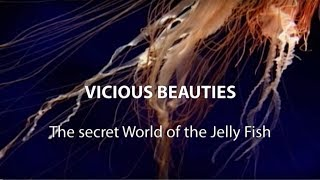 ► Vicious Beauties - The Secret World Of The Jellyfish (Full Documentary, HD)