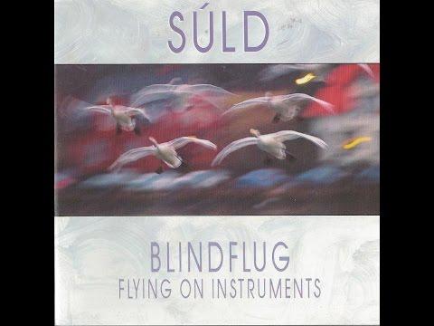 Steingrimur Gudmundsson - Súld-Flying on Instuments