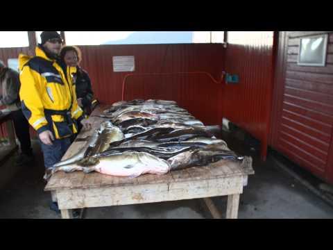 Рыбалочка в Норвегии