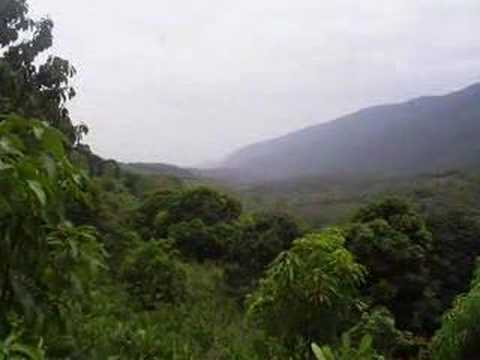 El Cielo Reportaje de Gomes Farias FCC UANL Mana Selva Negra