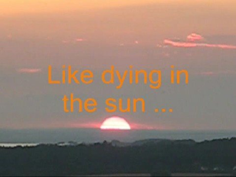 Dying In The Sun