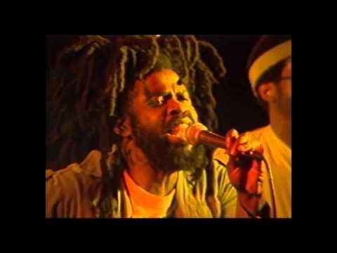Black Roots - Juvenile Delinquent