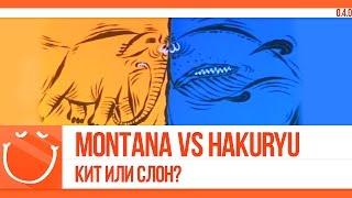 Montana vs Hakuryu. Кит или слон?