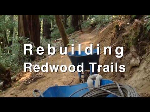 Rebuilding Redwood Trails