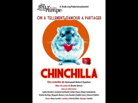 Chinchilla Teaser