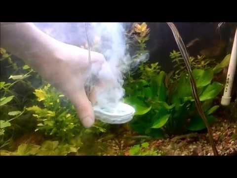 Jak zbudować sterylizator do akwarium