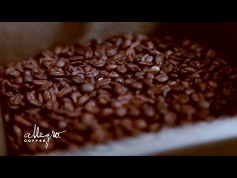 Swiss Water Decaf Process
