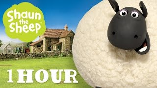 Những Chú Cừu Thông Minh - Tập 01 [một giờ]