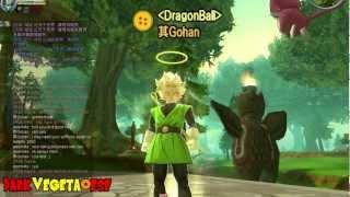 Dragon Ball Online Super Saiyan Wish!