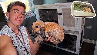 My Bunny's *MODERN CAGE* Is Inside NOW?!