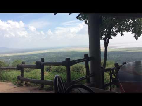 What to Look For When Choose Tanzania Luxury Lodge Safari