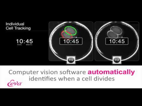 The Eeva System -- An Overview Video (MKT 2761 B)