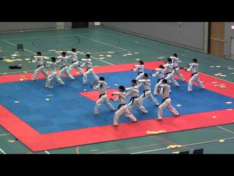 Kukkiwon Korean World famous Taekwondo Demoteam in Netherlands 2011-4-6 (3/5)