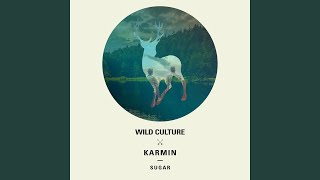 Sugar (Wild Culture vs. Karmin) (Extended Mix)