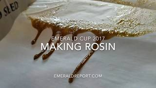 Rosin Making at the Emerald Cup 2017