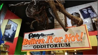 Ripley's Believe It Or Not! New York Vlog January 2019