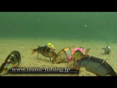 Красивая реклама воблера IZUMI shad live