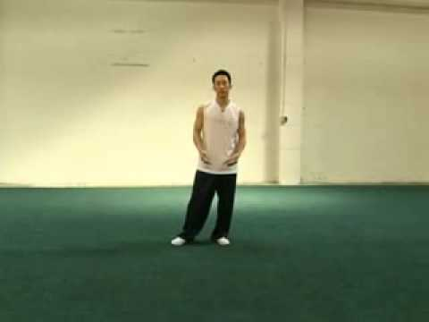 How to Do an Aerial - 5 From Cartwheels to Aerials