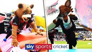 2018 Cricket Mascot Derby ends in controversy!