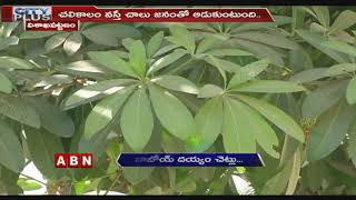 Be Alert: This plant may cause severe health hazards..