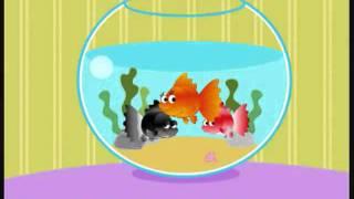 Cá vàng bơi trong bể nước chế