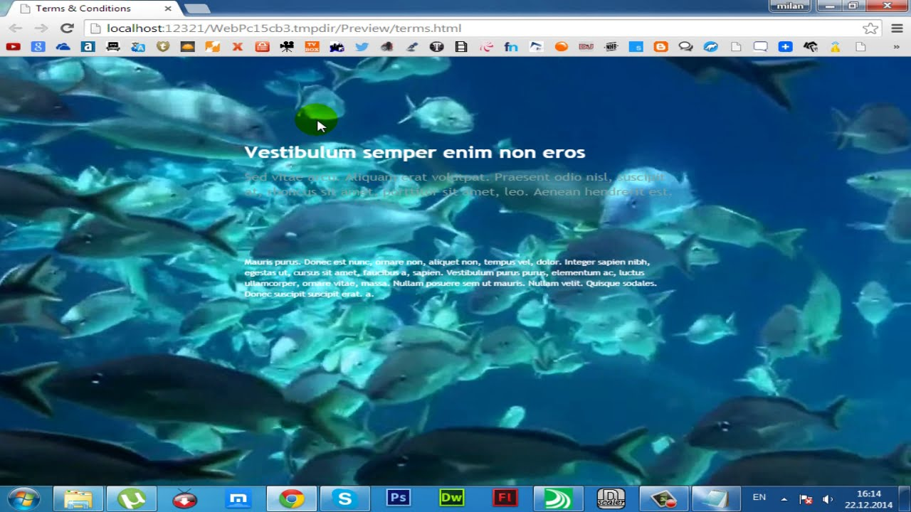 How to put video background for Serif WebPlus 2015