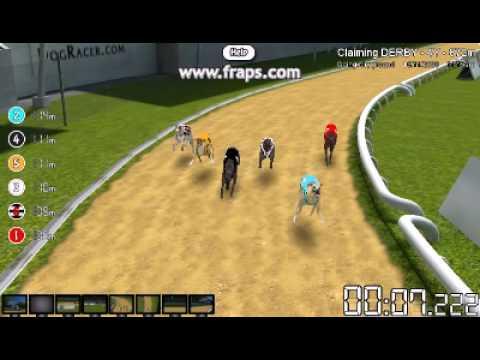 Greyhound Racing Games