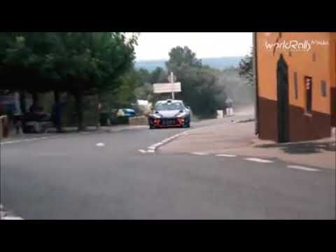 Thierry Neuville Flat Out