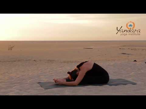 Paschimottanasana | Seated Forward Bend by Allison Eaton